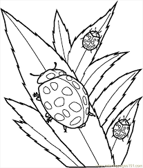 Create Your Own Coloring Book Online