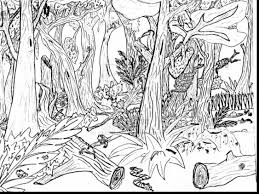 Good Forest Animals Coloring Pages With Nature And Pdf