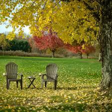 Adams Resin Adirondack Chairs by Adams Mfg 8390 60 3700 Big Easy Adirondack Chair Resin Earth