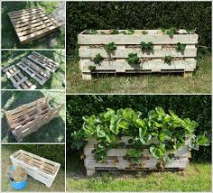 Make This Amazing Strawberry Planter From A Single Pallet