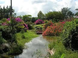 Stroll Through Elegant Nani Maui Gardens in Hilo of the Big Island