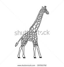 Abstract Monochrome Vector Adult Giraffe In Motion On A White Background