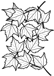 Click To See Printable Version Of Autumn Maple Leaves Coloring Page