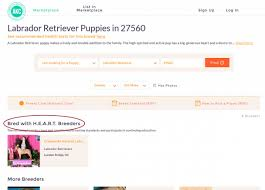 Bred With H.E.A.R.T. Benefits Glasses Online Promo Codes Fgrance Shop Student Discount Nus Life With Lucy Poppy Registering A Dog With Akcs Canine Sheboygan Sun 627 Pages 1 32 Text Version Fliphtml5 Collars And Slip Leads Owyheestar Weimaraners News Coupon Microchip Registration Center Wix Coupon The Show Julie Forbes By On Apple Podcasts Facebook Code Holiday Bonus Pelle Pelle Coupons Revival Michael Kors Styles Ootdfash Ease My Trip Free Ce Coupon Akc Reunite