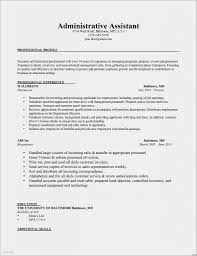 Personal Business Ideas Gallery As 30 Luxury Resume Profile Examples Simple