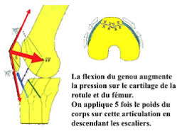 genou lyon ortho clinic