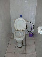 toilettes bouches que faire déboucher des toilettes bouchées comment faire