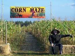 Pumpkin Patch Near Pensacola Fl by New Corn Maze At Hillcrest Farm Outdoor Gulf Coast Of Northwest