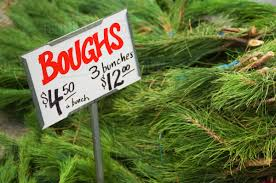 Christmas Tree Branches For Sale