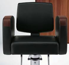 All Purpose Salon Chair Canada by 100 All Purpose Salon Chairs Hair Salon Furniture Hair
