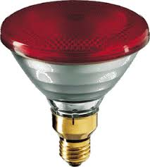 watt 240 volt par38 philips infrared light bulb