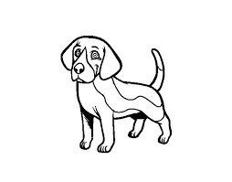Realistic Dog Coloring Pages Beagle Page