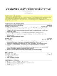 Professional Profile Paragraph Form Resume