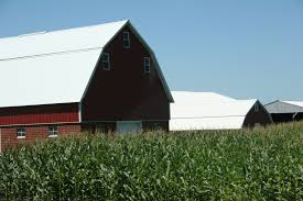 Farm Bill: We're Getting Close (for Real This Time...probably ... Red Barn In Arkansas Red Hot Passion Pinterest Barns New Mexico Medical Cannabis Sales Up 56 Percent Patients 74 Barnhouse Country Stock Photo 50800921 Shutterstock Rowleys Barn Home Of Spoon Interactive Childrens Dicated On Opening Day Latest Img_20170302_162810 Growers Redbarn Wet Cat Food Two Go Tiki Touring Black Market The Original Choppers By Redbarn 100 Natural Baked Beef Chews For Dogs Meet The Team Checking Out Santaquin Utah Bully Stick