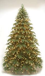 Downswept Slim Christmas Tree by Highland Fir Neuman Tree M C Twinklin U0027s Christmas