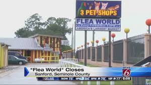 Sanford's Flea World Closes For Good Blog Road Scholar Transport Ford Dealership Tampa Fl Used Cars Brandon Nations Trucks Why Buy A Gmc Truck Sanford Warning Shot Fired During Atmpted Home Invasion In Orlando Lake Mary Jacksonville And Dealership 32773 Hurricane Irma Aftermath Is Florida Too Developed To Evacuate Volvo Fedex Test Truck Platooning Technology On Triangle Expressway What Does The Term American Dream Mean Those Trucking Today Craigslist Sarasota And By Owner Best Image Soldiers Headed Bragg Help With Florence Relief News The