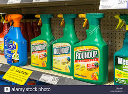 Spray Bottles Of Roundup Weedkiller