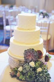 175 Best Succulent Wedding And Ect Images On Pinterest
