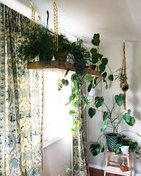 Best Bathroom Pot Plants by Clever Ways To Hang Your Plants Bohemian Plants And Modern