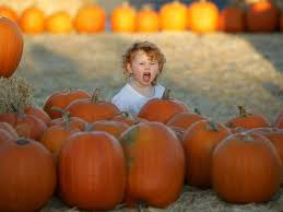Carmichaels Pumpkin Patch Oklahoma by Pumpkin Patches And Hayrides Before Halloween 2014 In Tulsa And