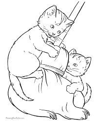Cat Photo In Free Printable Animal Coloring Pages