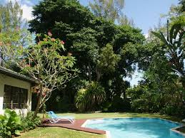Tropical Paradise 3 BR/2.5 BA Home With Poo... - VRBO Patio Ideas Small Tropical Container Garden Style Pool House Southern Living Backyard Design 1000 About Create A Oasis In Your With Outdoor Plants 1173 Best Etc Images On Pinterest Warm Landscaping 16 Backyard Designs The Cool Amenity For Tropicalbackyard Interior Vacation Landscapes Diy