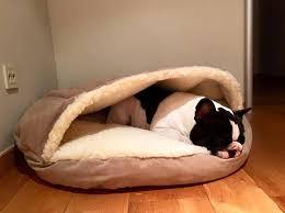Cozy Cave Dog Bed Xl by Snoozer Luxury Cozy Cave Dog Bed With Microsuede Snoozer Zoe Cozy