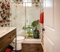 Good Plants For Windowless Bathroom by Bathroom Plants That Dont Need Light Feng Shui Rules For With No