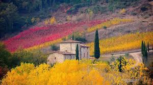 Tuscany Italy Autumn Landscape Fields Trees Nature Landscapes Fullscreen Wallpaper