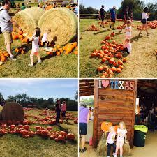Pumpkin Patch Near Austin Tx by Barton Hill Farms Fall Festival And Corn Maze Review Local
