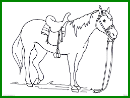 Unbelievable Realistic Horse Drawing At Getdrawings For Personal Use Pics Of Head Coloring Pages Style And