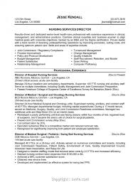 Simple Hospice Rn Case Manager Resume Example Of Nurse Template Templates Icu