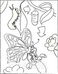 Caterpillar Butterfly Coloring Pages