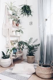 die schönsten pflanzen deko ideen seite 25
