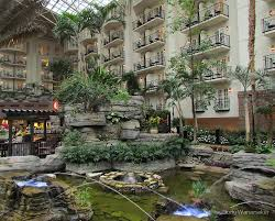 Gaylord Opryland Hotel Coupon Code : Cute Baby Buy Coupon Code How To Use Cheapticketscom Coupon Codes Priceline Flight Coupon 2019 Get Discounts On Hotel Booking Using Qutoclick Coupons By Orlandodealhurmwpcoentuploads2701w Hotel Codes Wicked Ticketmaster Code Treebo Coupons Promo Code Exclusive Sale Dec 0203 75 Off Expedia Singapore December Barcelocom Best Travel Deals For June Las Vegas Purr Smoking Promo Official Travelocity Discounts