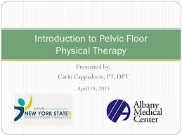 Pelvic Floor Tension Myalgia Exercises by Introduction To Pelvic Floor Physical Therapy Ppt Download