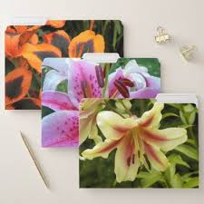 Lily Blooms Floral File Folder floral ts flower flowers