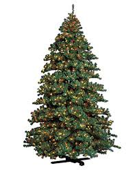 Amazoncom Barcana 7Foot Remote Control Alaskan Fir Christmas Tree