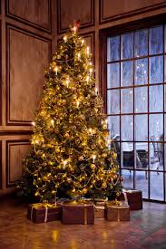 Christmas 10 Extraordinary Professional Tree Decorators Treetors Holidayting Service Hometing2