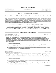 Sales And Account Manager Representative Resume By Ronald Collado