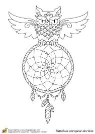 Owl Dreamcatcher Coloring Page