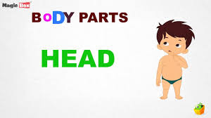 Body Parts Intro Body Parts Pre School Learn Spelling Videos