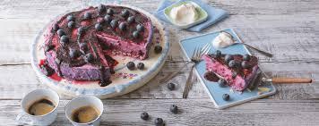 blaubeer joghurt torte mit agar agar