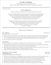 Spanish Resume Example Translate To Awesome In New Sample Samples