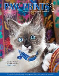 Wilton Manors Halloween Theme 2015 by Paw Prints Summer 2015 By Humane Society Of Broward County Issuu