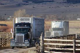 100 Evans Trucking BYE BYE BABIES LIFE ON THE RANCH