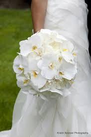 Exquisite Round Wedding Bouquet White English Garden Roses