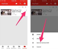 How to Download Videos on iPhone and Save to Camera Roll