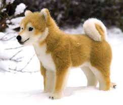 Do Shiba Dogs Shed by Shiba Inu History Personality Appearance Health And Pictures