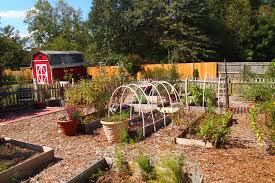My st Fall Winter Ve able Garden Ever A Cultivated Nest